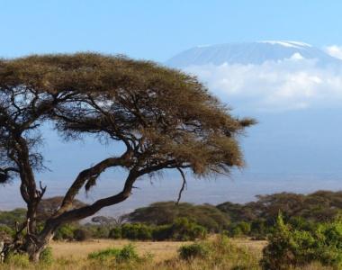 Landskab Kenya Afrika